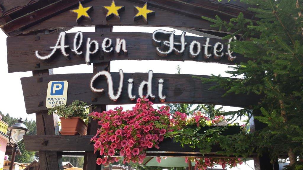 Alpen Hotel Vidi - Particolare